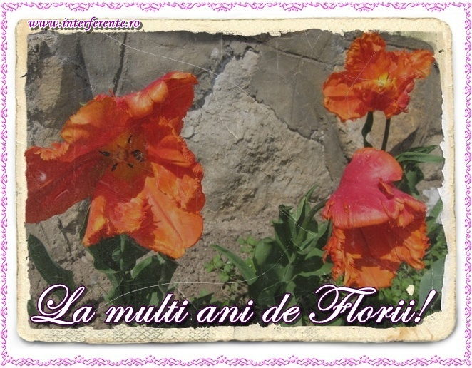 Felicitari de Florii